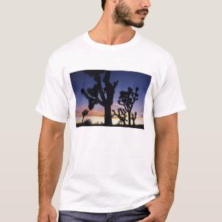 USA, California, Joshua Tree National Park, T-Shirt