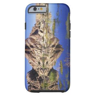USA, California, Joshua Tree National Park, Tough iPhone 6 Case