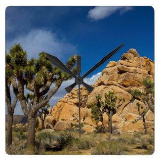 USA, California, Joshua Tree National Park Wallclock