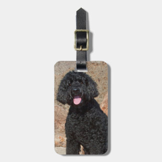 USA, California. Labradoodle Sitting Luggage Tag