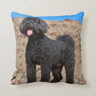 USA, California. Labradoodle Standing Throw Pillow