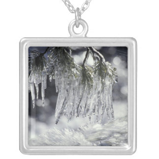 USA, California, Lake Tahoe. Icicles over Square Pendant Necklace