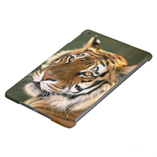 USA, California, Los Angeles County. Portrait 5 iPad Air Covers