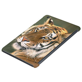 USA, California, Los Angeles County. Portrait 5 iPad Mini Cover