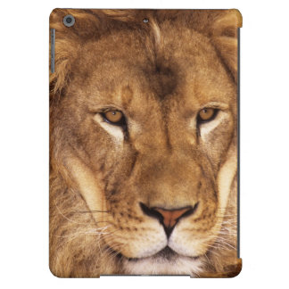 USA, California, Los Angeles County. Portrait iPad Air Cases