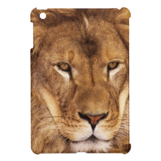 USA, California, Los Angeles County. Portrait iPad Mini Cover