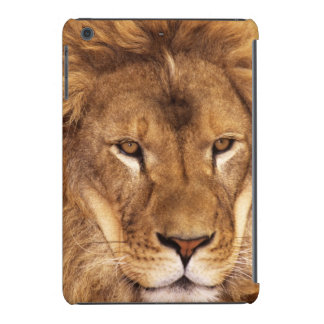 USA, California, Los Angeles County. Portrait iPad Mini Retina Cover