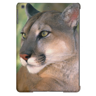 USA, California, Los Angeles County. Portrait of Cover For iPad Air