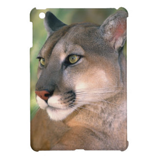 USA, California, Los Angeles County. Portrait of iPad Mini Cases