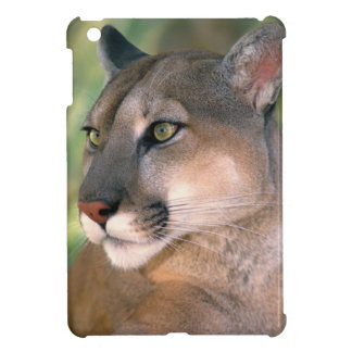 USA, California, Los Angeles County. Portrait of iPad Mini Cover