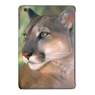 USA, California, Los Angeles County. Portrait of iPad Mini Covers