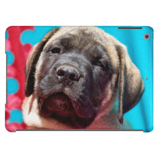 USA, California. Mastiff Puppy Looking At You Case For iPad Air