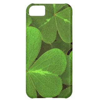 USA, California, Muir Woods. Close-up of clover iPhone 5C Case