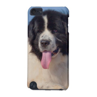 USA, California. Newfoundland Lying In Sand iPod Touch (5th Generation) Cases