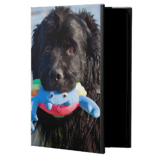 USA, California. Newfoundland With Toy In Mouth Cover For iPad Air