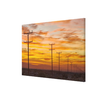 USA, California, Palm Springs, power line at 2 Stretched Canvas Print