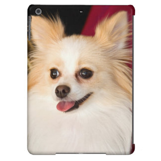 USA, California. Pomeranian Portrait With Red iPad Air Cases
