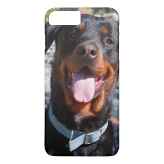 USA, California. Rottweiler Smiling iPhone 7 Plus Case