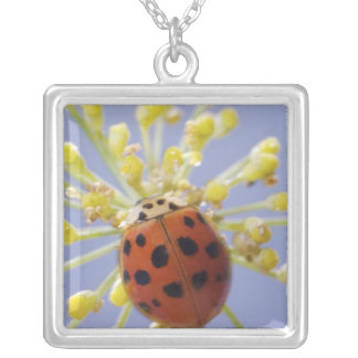 USA, California, San Diego, Close-up of a lady Square Pendant Necklace