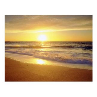 USA, California, San Diego. La Jolla Shores Postcard