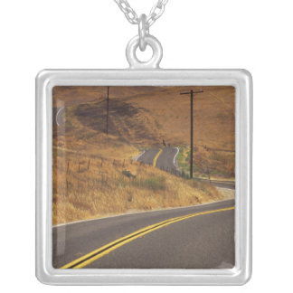 USA, California. Winding country road. Credit Square Pendant Necklace