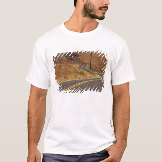 USA, California. Winding country road. Credit T-Shirt
