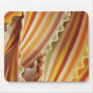 USA. Close-up of dried rainbow pasta noodles. Mouse Pad