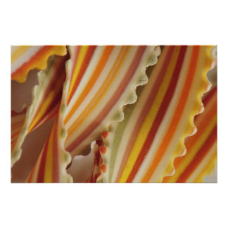 USA. Close-up of dried rainbow pasta noodles. Poster