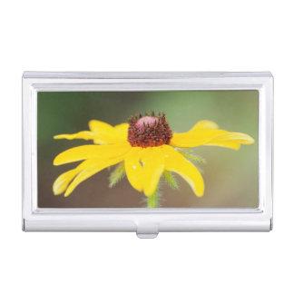 USA, Colorado, Boulder. Sunflower close-up Case For Business Cards