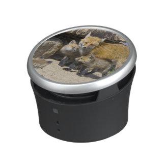 USA, Colorado, Breckenridge. Red fox mother 4 Bluetooth Speaker