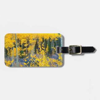 USA, Colorado. Bright Yellow Aspens In Rockies 2 Luggage Tag