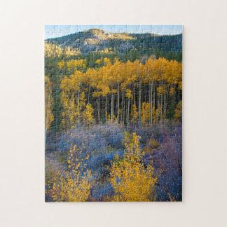 USA, Colorado. Bright Yellow Aspens in Rockies Jigsaw Puzzle