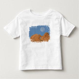 USA, Colorado, Colorado Springs, Garden of the 2 Toddler T-Shirt