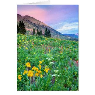 USA, Colorado, Crested Butte. Landscape 2 Card