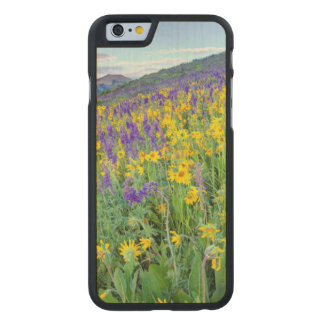 USA, Colorado, Crested Butte. Landscape Carved® Maple iPhone 6 Slim Case