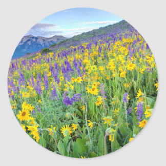 USA, Colorado, Crested Butte. Landscape Classic Round Sticker