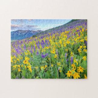 USA, Colorado, Crested Butte. Landscape Jigsaw Puzzle