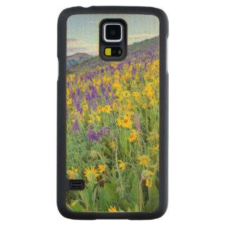 USA, Colorado, Crested Butte. Landscape Maple Galaxy S5 Slim Case