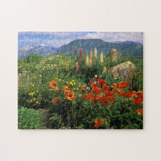 USA, Colorado, Crested Butte. Poppies and lupine Puzzle
