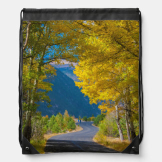 USA, Colorado. Road Flanked By Aspens Drawstring Bags