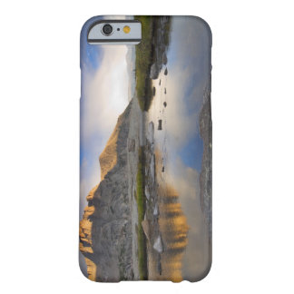 USA, Colorado, Rocky Mountain NP. Barely There iPhone 6 Case