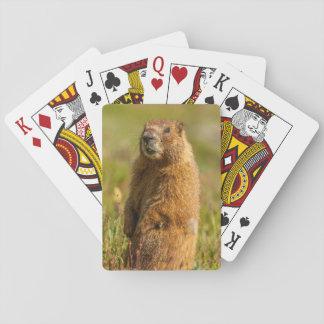 USA, Colorado, San Juan Mountains Playing Cards