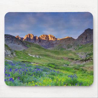 USA, Colorado. Sunrise On Wildflowers Mouse Pads