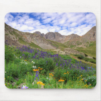 USA, Colorado. Wildflowers In American Basin Mouse Pads