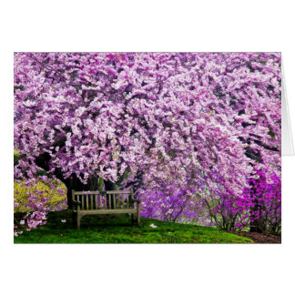 USA, Delaware, Wilmington. Wooden bench under Greeting Card