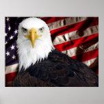 USA Eagle Patriotic Print