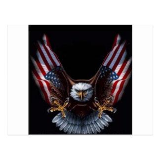 USA EAGLE POSTCARD