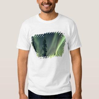 USA, Fairbanks area, Central Alaska, Aurora Shirt
