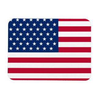 "Usa Flag 3""x4"" Magnet"