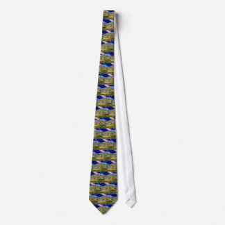 USA Flag Airliner Tie